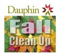 dauphin clean up.jpg